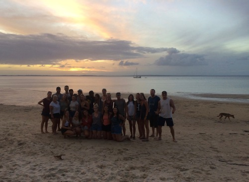 Sunset with the whole group (and a dingo in the background)