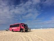Our Cool Dingo bus